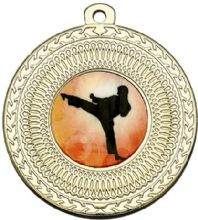 Golden 50mm Martial Arts Medal